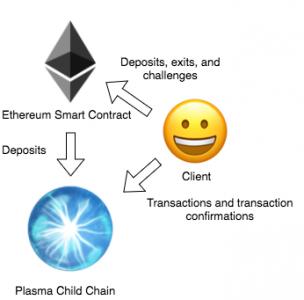 Plasma network interaction