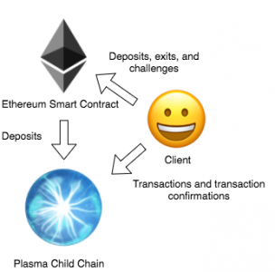 Plasma network interaction