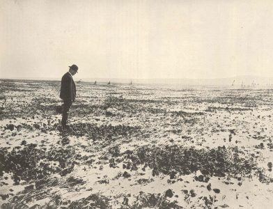 man staring at an oyster bed
