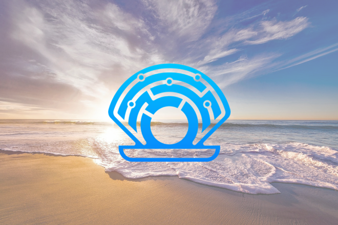 oyster_protocol
