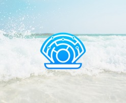 Oyster Mainnet Launch
