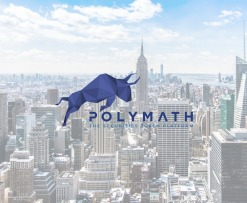 What is Polymath