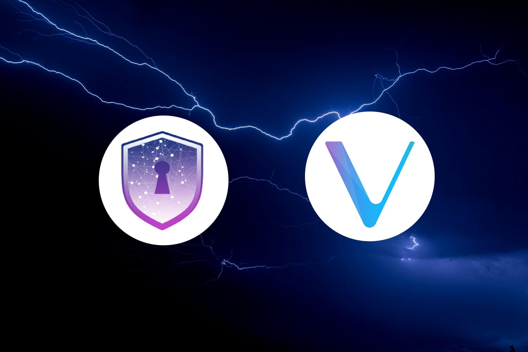 Safe Haven Joins the VeChainThor Blockchain