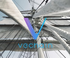 Vechain_Mainnet