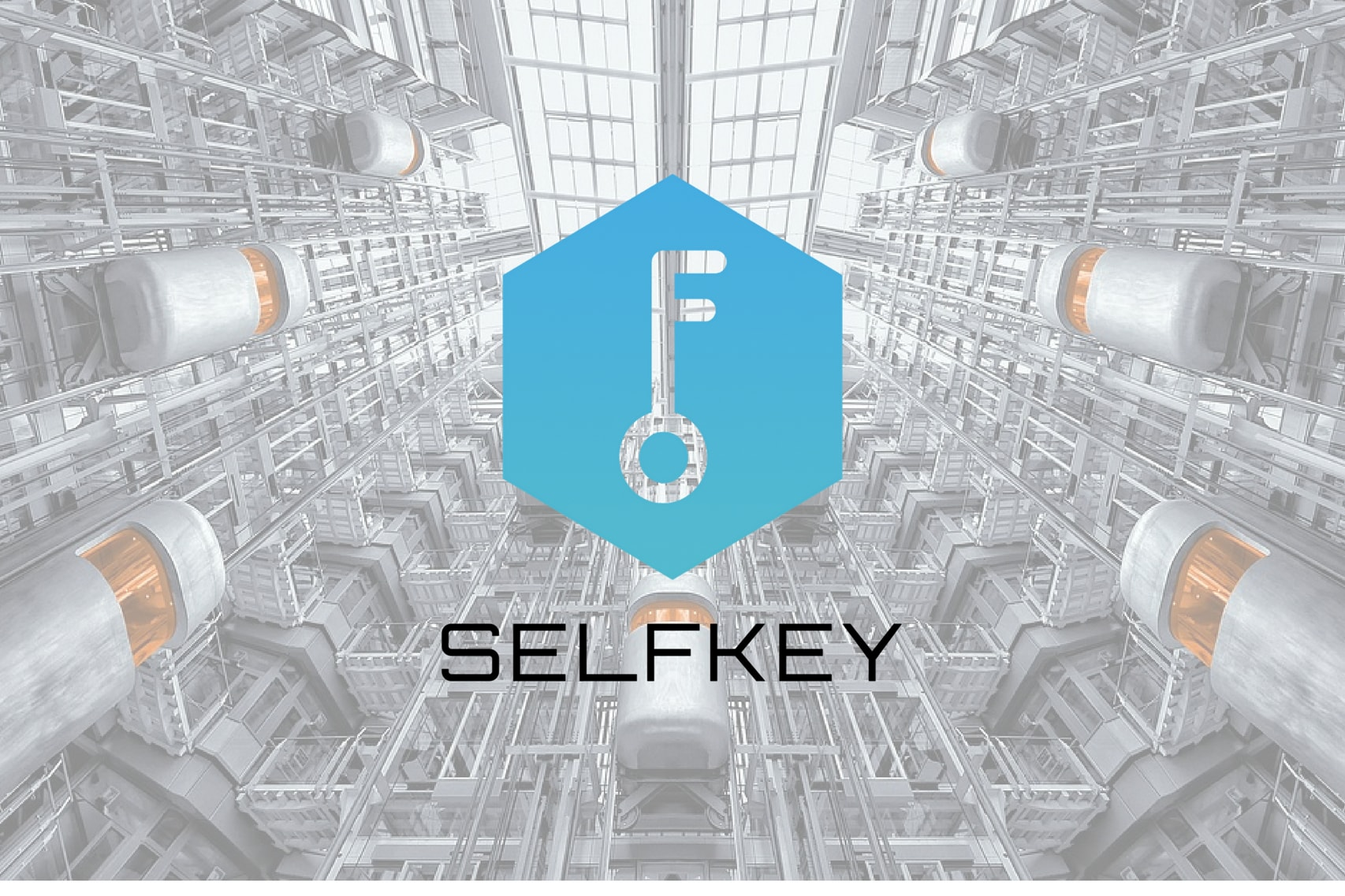 What is SelfKey?