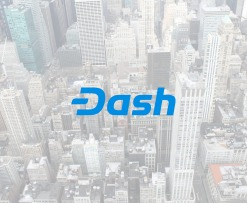 Dash v12.3 is Released!