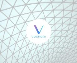 vechain_AMA
