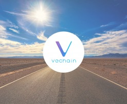 Vechain_Wallet_Mainnet