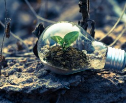 Does Cryptocurrency Have a Green Future?