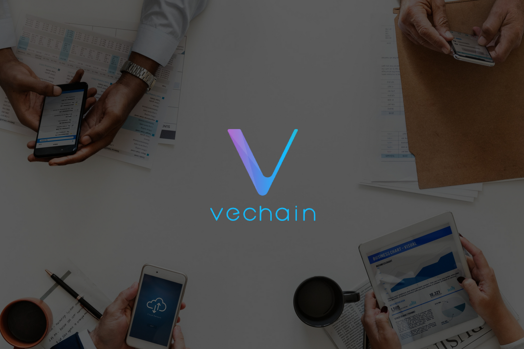 VeChainThor Mobile Wallet