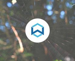 wanchain3.0_alpha_testing