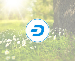 dash_affirms_sustainability