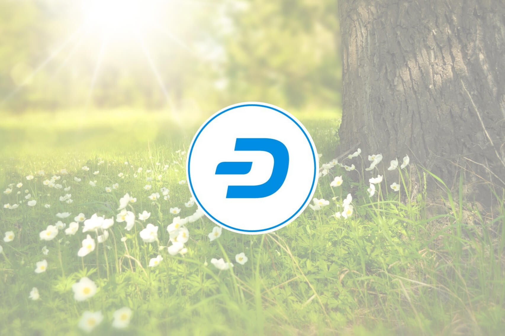 dash_affirms_sustainability