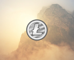 ltc_positive_growth
